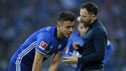 Schalke vs Mainz Free Betting Tips 29/09